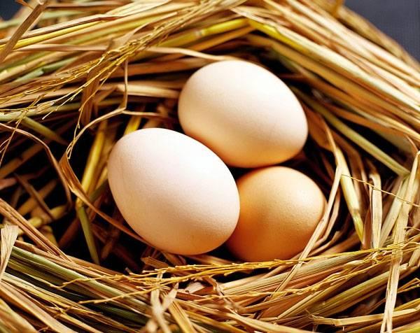 Hé lộ khả năng thổi bay thâm nám, giúp da trắng mịn của trứng gà