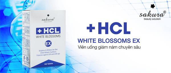 """""""Điểm mặt"""" những tính năng cải tiến nổi bật nhất của Sakura HCL White Blossoms EX"""
