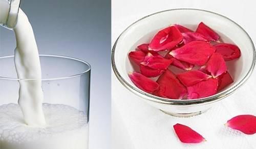Kết quả hình ảnh cho Cánh hoa hồng và sữa tươi